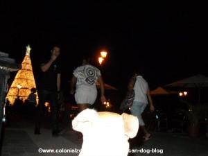 coca cola christmas tree plaza espana colonial zone with the dominican dog, Teli