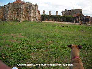 the back side of the ruinas de san francisco, zona colonial, santo domingo
