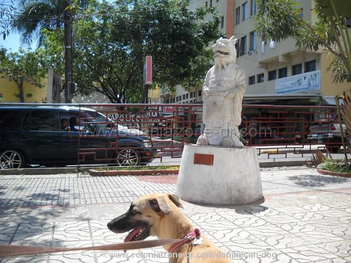 China Town Santo Domingo