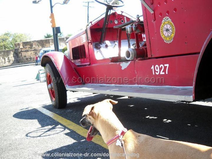 bomberos antique fire truck santo domingo