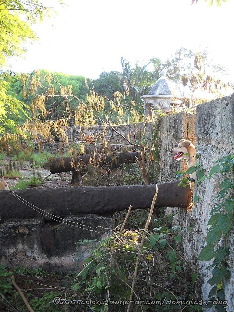 Buenagente visiting Fortaleza Ozama