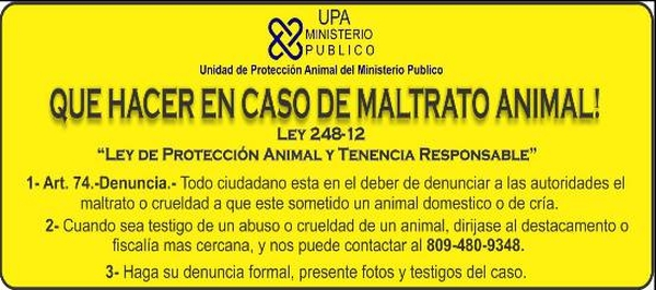 Dominican Republic Animal Cruelty Contact Information