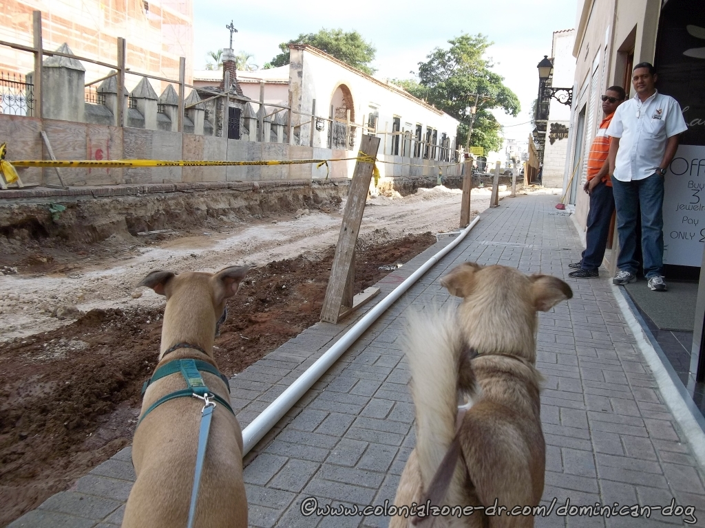 Teli and Buenagente checking out the road work in Calle Meriño.