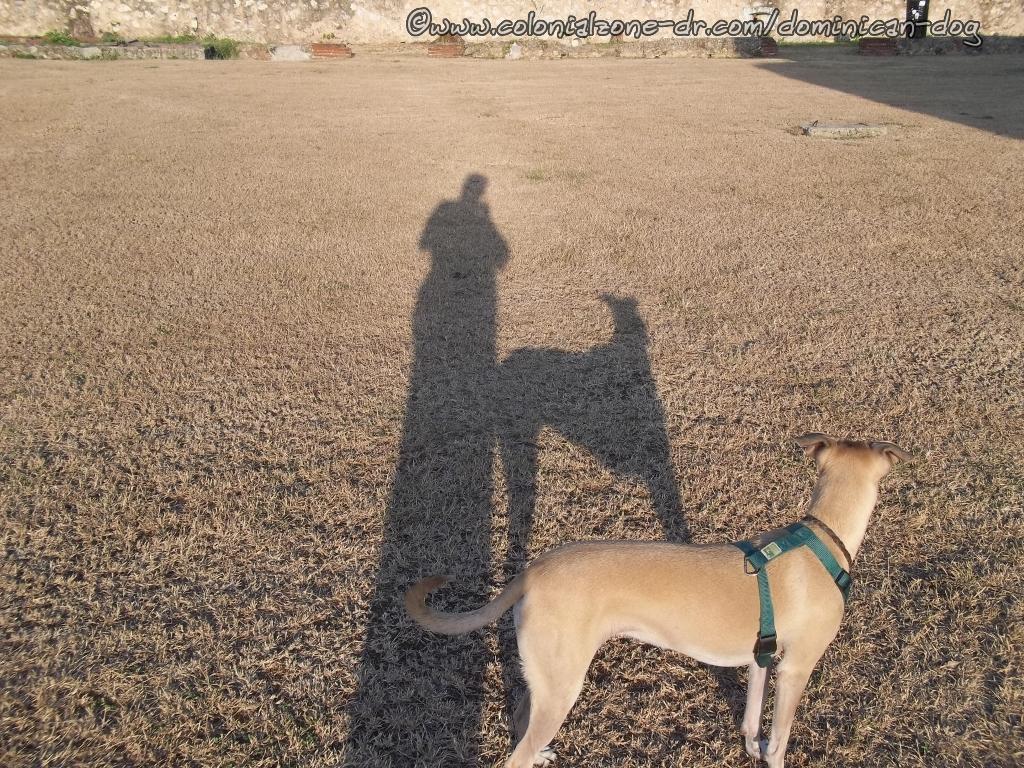 Telis' birthday with moms shadow