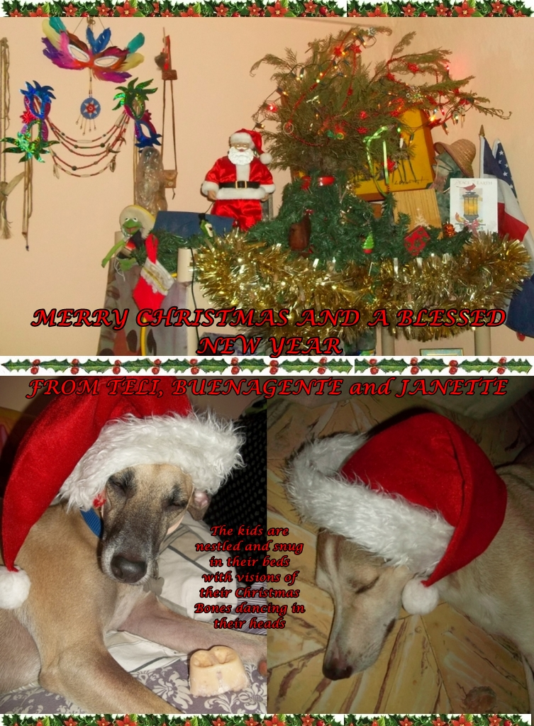 Merry Christmas from Teli, Buenagente and the mom 2014