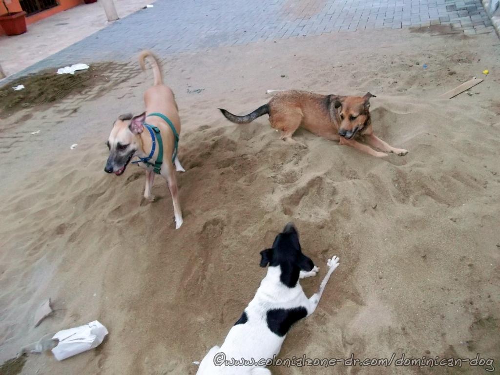 Sand pile romp