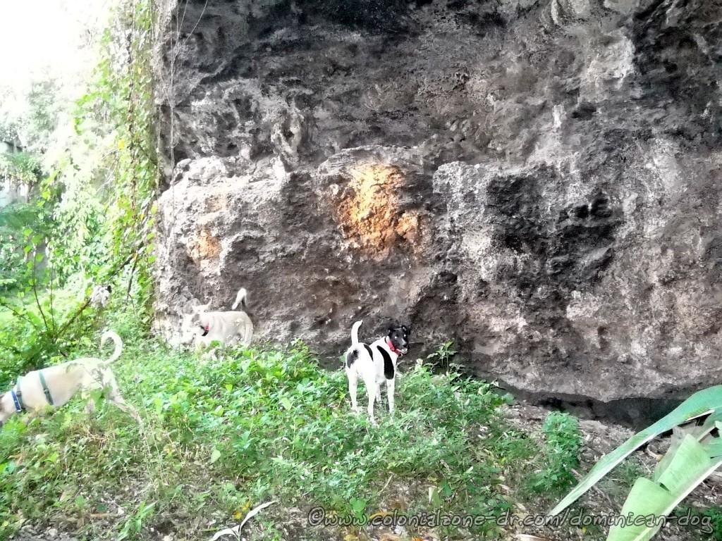 Fortaleza Ozama Abajo at the cave
