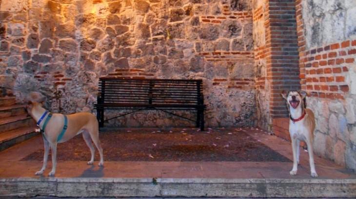 Plaza-Poesia-05-5-19-2015
