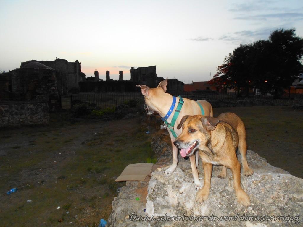 Teli and Julio watching the morning sky at the Ruinas del Monasterio de San Francisco