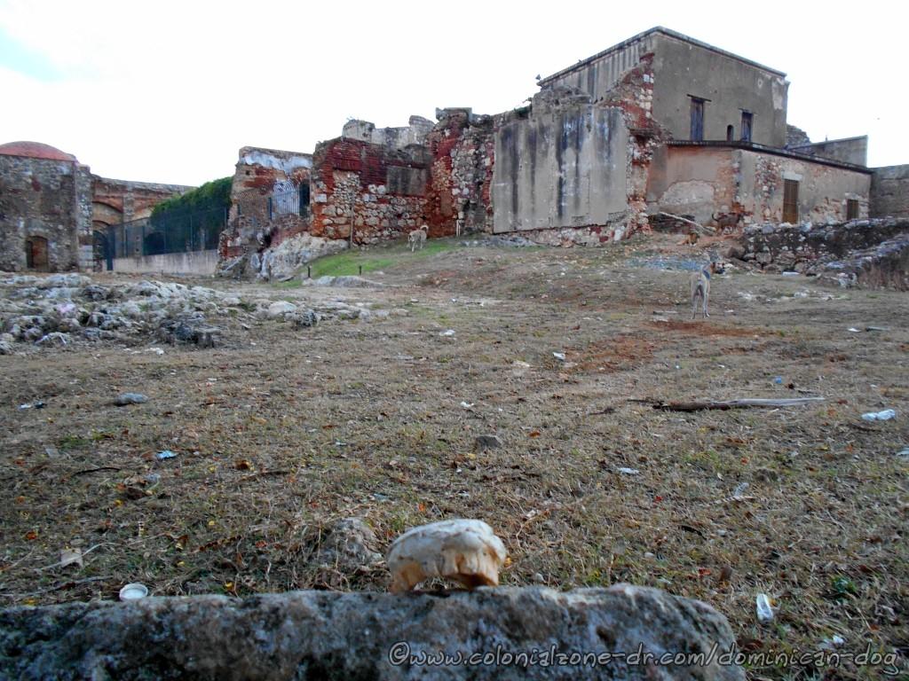 The teeth, Buenagente and Inteliperra at the Ruinas del Monasterio de San Francisco.