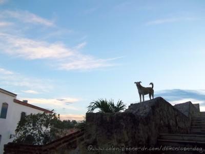 Plaza-Espana-Buenagente-gazing-05-11-5-2014(fb)(dogblog)