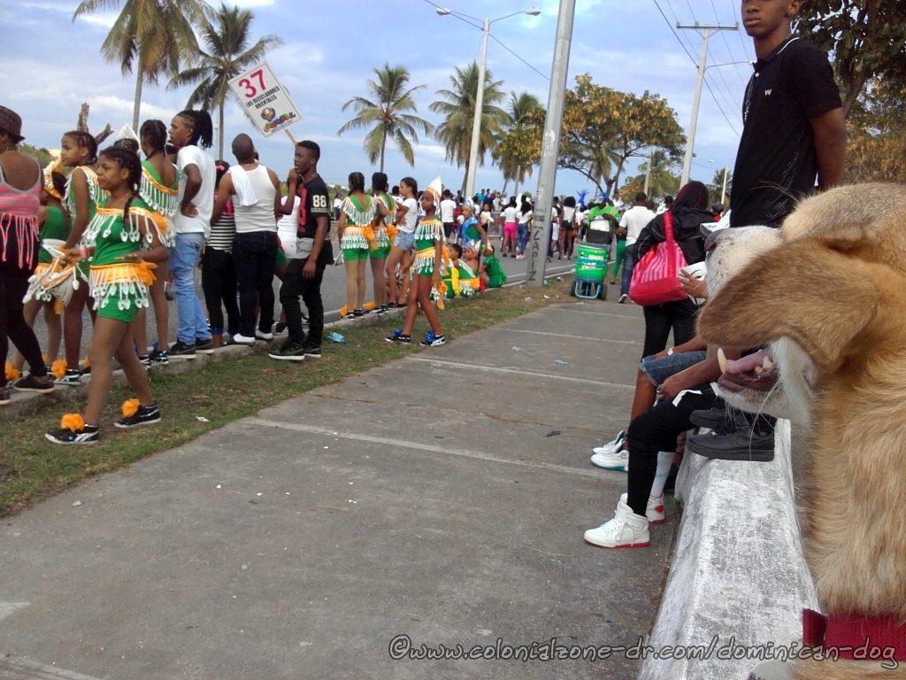 Carnaval Avenida España Buenagente observing Los Recicladores Orientales