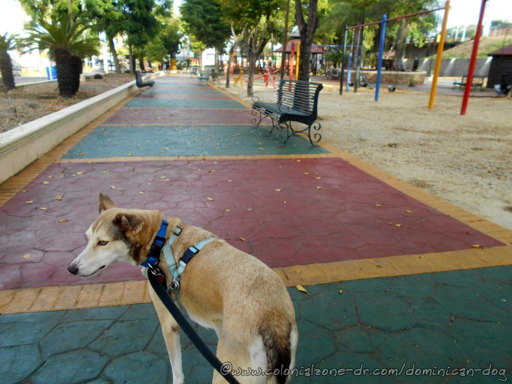 Buenagente at Parque Calero, Villa Duarte