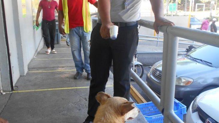 The manager of Aprezio Supermarket took Buenagente temperature testing for Coronavirus.