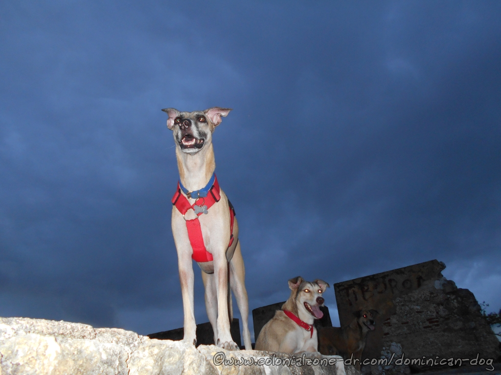 Inteliperra, Buenagente and Julio under stormy skies