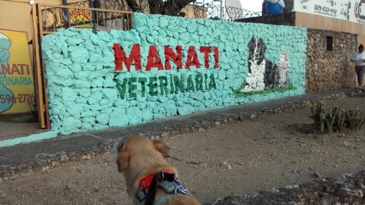 Manati Veterinaria, Los Molinos, Villa Duarte.