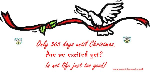 365 Days until Christmas 2013
