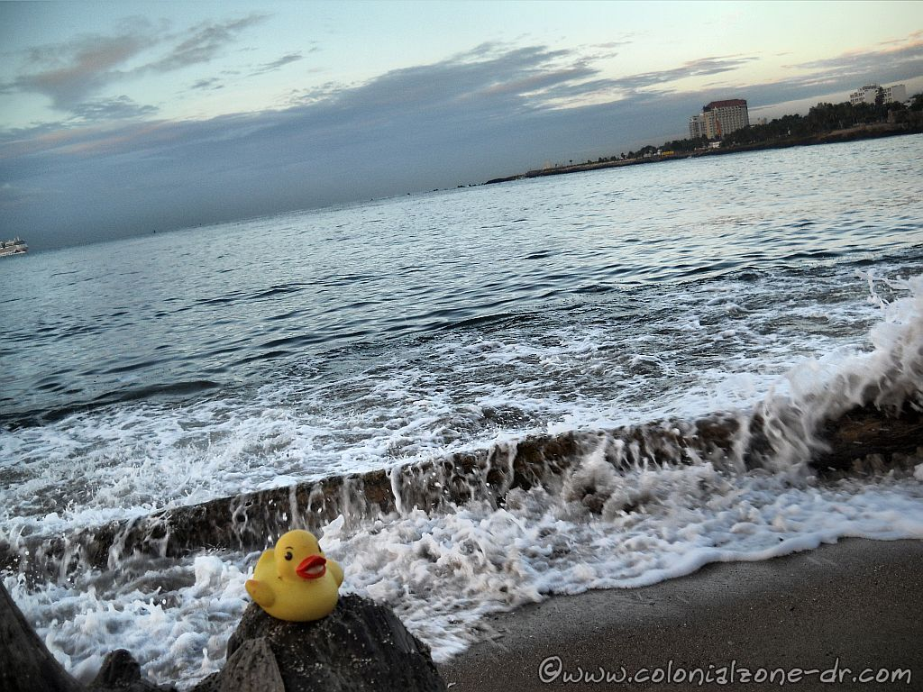 Beach Junk Stories - Baby rubber duckie visits Dominican Republic