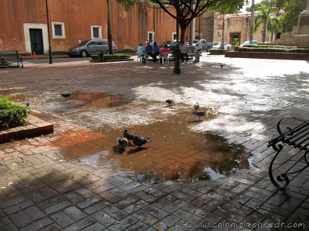 Parque Duarte after the rain