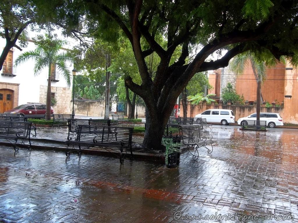 Parque Duarte in the rain