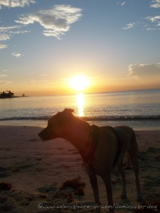 Teli enjoying her last  sunrise over Juan Dolio Beach