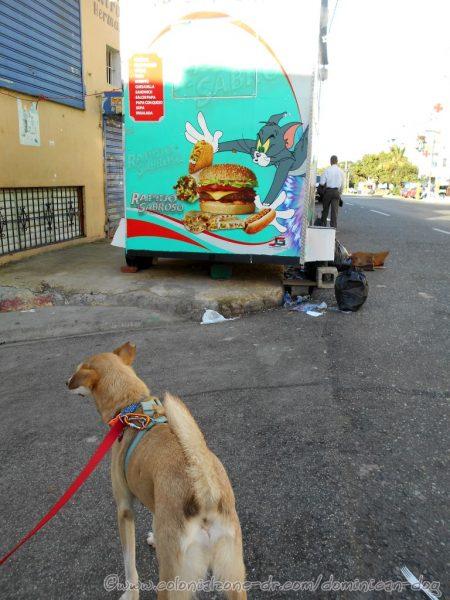 Buenagente checking out a food truck parked on Avenida España, Villa Duarte.