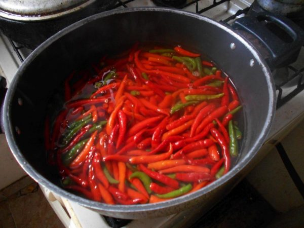 Cooking chili peppers in a little water.