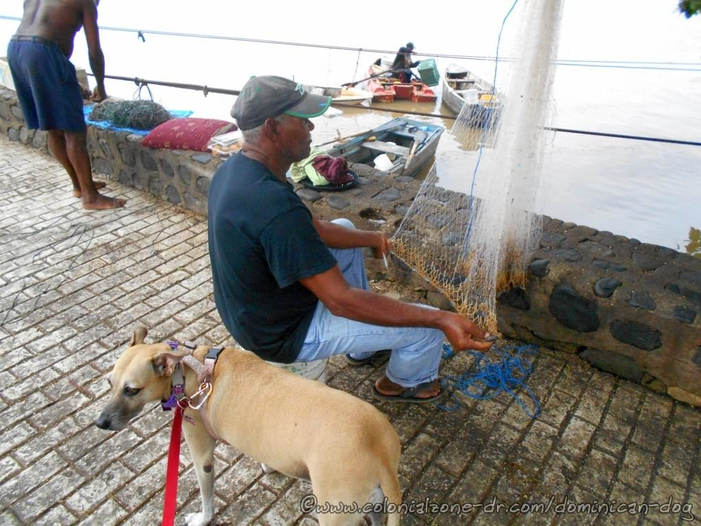 Inteliperra visiting with her fisherman friend as he repairs his nets on Rio Ozama, Santo Domingo