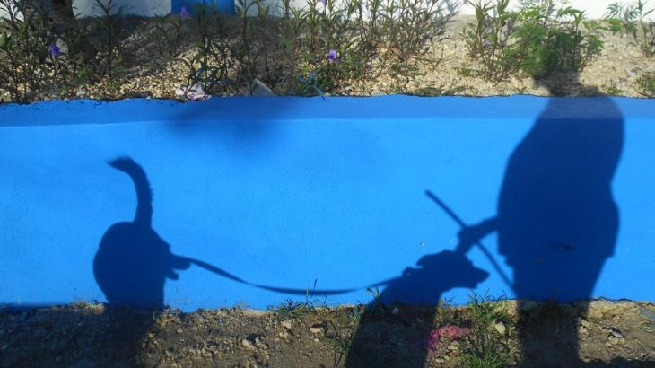 A shadow pictrue of Buenagente, Inteliperra and momma.