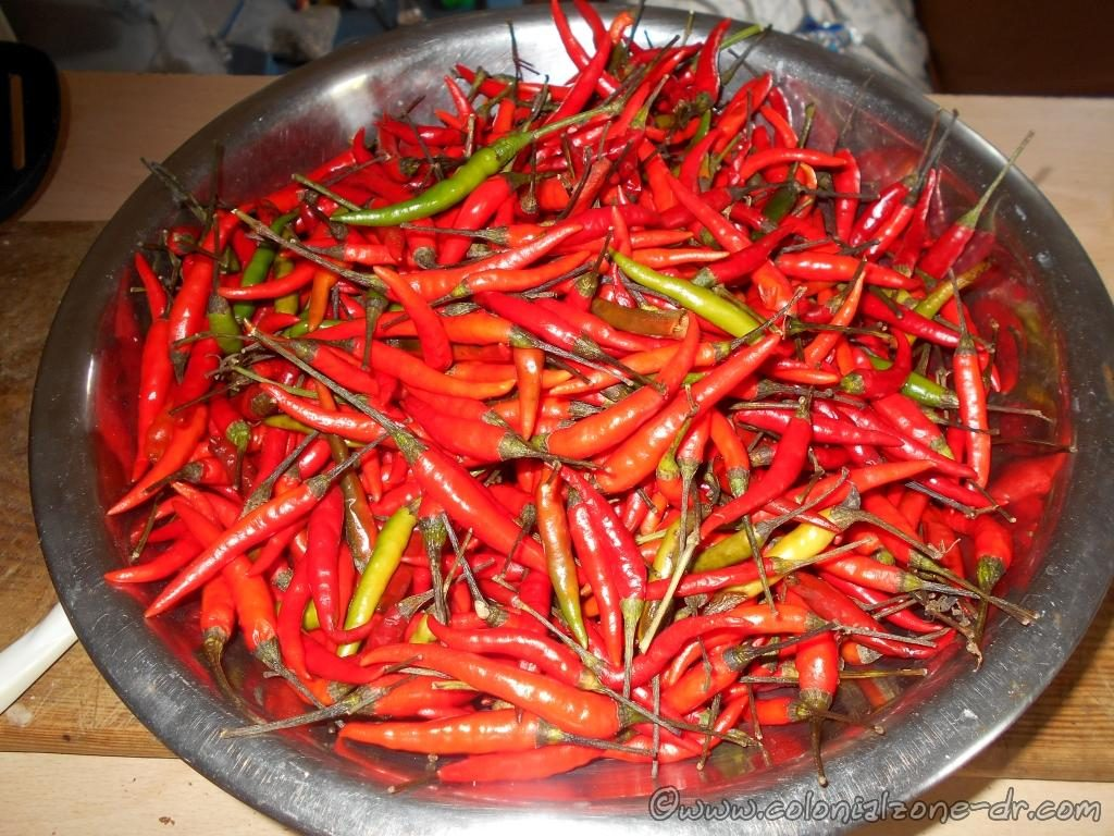 My addiction -Chili peppers before
