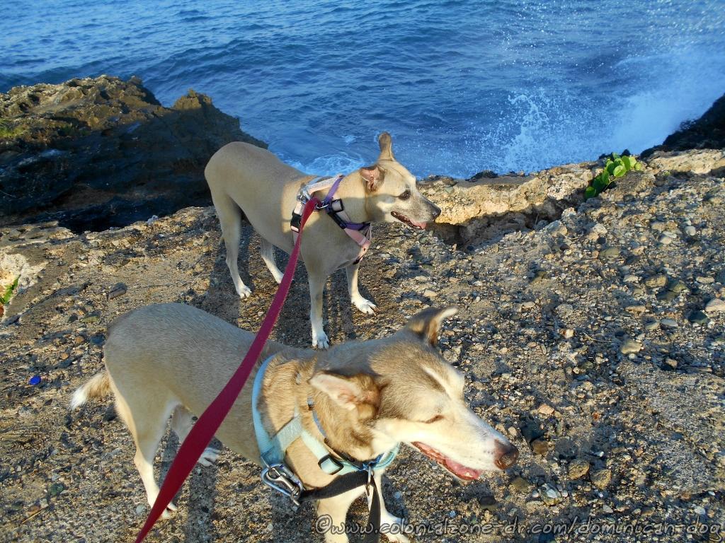 Buenagente and Inteliperra at Punta Torrecilla enjoying social distancing COVID-19