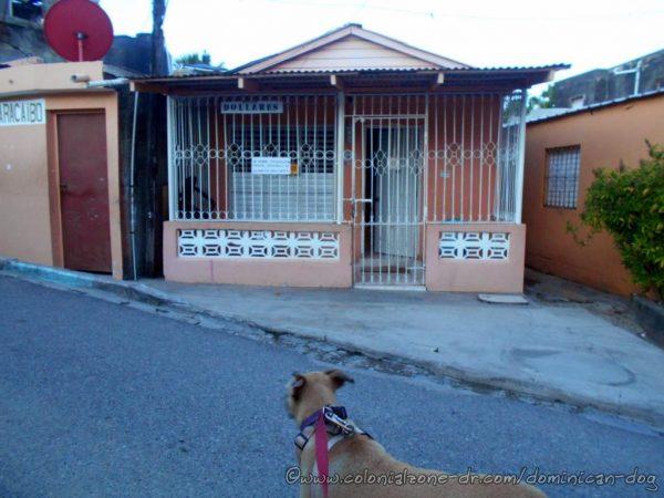 Inteliperra passing a nice wooden house, D'Maracaibo Cambio Dolares, in Simonico Villa Duarte