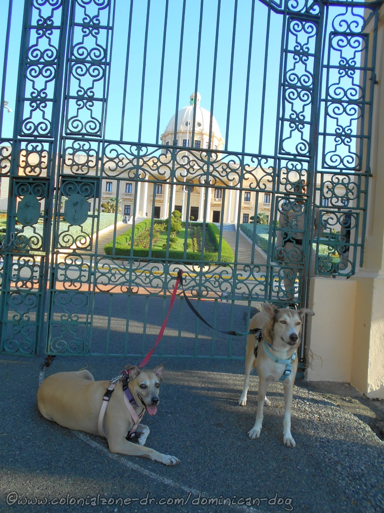 Inteliperra and Buenagente smiling at the gate of the National Palace