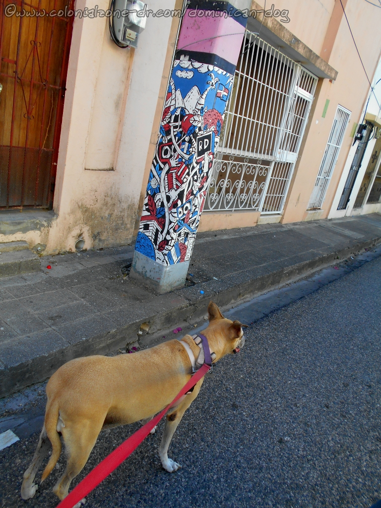 Inteliperra in front of one of the painted poles on Calle Espaillat.