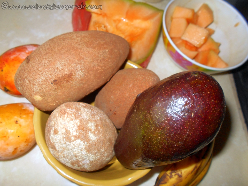 Some fruits for Batida   or eating. Zapote, avacado, cantaloupe (melon), mango, banana. All can be added separately or together.